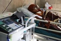 انفجار سیلندر گاز در تکاب 2 نفر را روانه بیمارستان کرد
