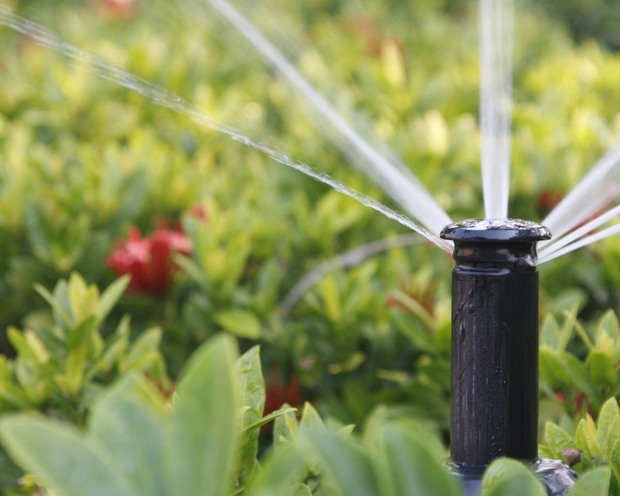 کاهش حدود 80 درصدی آبیاری فضای سبز با تانکر