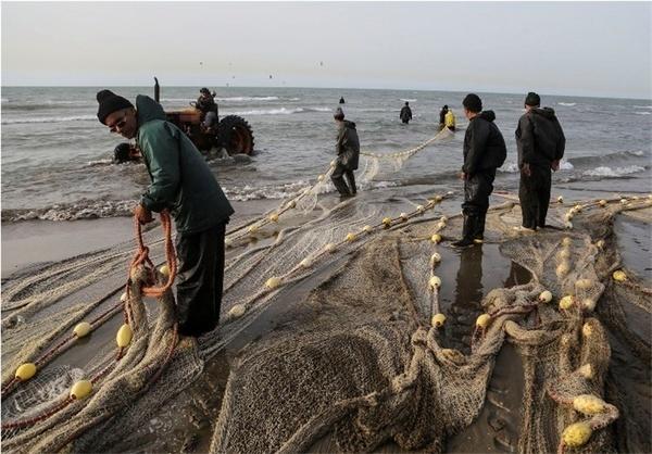 پایان فصل صید ماهیان استخوانی  در دریای خزر