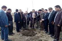 هردانشجو یک نهال کاشت پنج هزار نهال میوه به دست دانشجویان همدانی