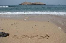ساحل جزیره ابوموسی پاکسازی شد