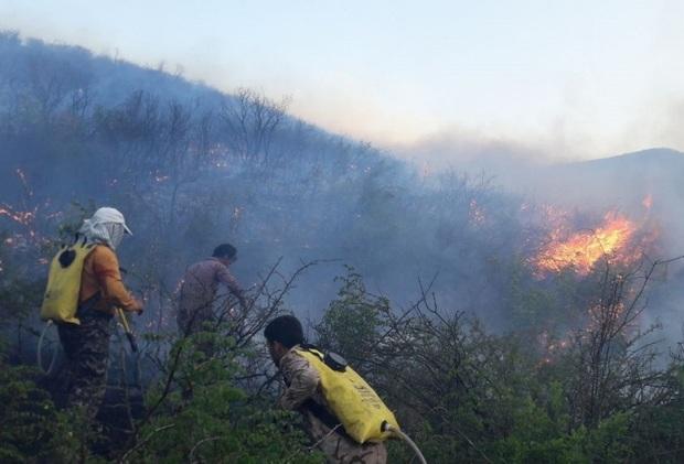 20هکتار از جنگل ها و مراتع باشت در آتش سوخت