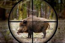 چهار شکارچی غیر مجاز در خمین به دام افتادند