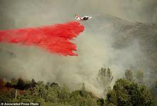 کالیفرنیا می سوزد+ تصاویر