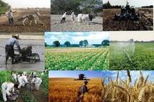 اختصاص 2 هزار و 250 میلیارد ریال تسهیلات اشتغال به بخش کشاورزی آذربایجان شرقی