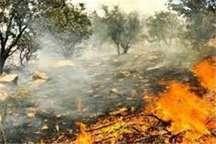 مهار آتش سوزی در 7 هکتاراز زمین های ملی منابع طبیعی در حاجی آباد