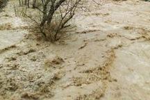 بارندگی کوهرنگ از 123 میلیمتر فراتر رفت