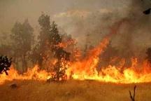 آتشسوزی در ارتفاعات تفتان  نابودی 20 هکتار از پوشش گیاهیمنطقه