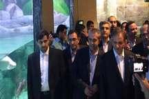 مجموعه آکواریوم و اسکله مارینا در منطقه آزاد انزلی افتتاح شد