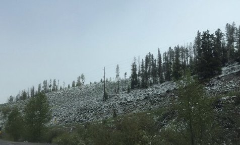 بارش برف تابستانی در یکی از ایالت های آمریکا! + تصاویر