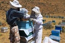 220 میلیارد ریال وام اشتغال در روستاهای ری پرداخت شد