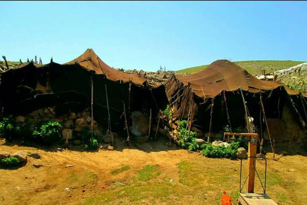 158 آبشخور برای دام های عشایر قزوین احداث شد