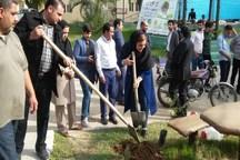 آیین کاشت نهال با عنوان «بیمارستان سبز» در شوشتر اجرا شد