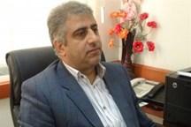 6 هزار تن از خانواده های شهید در مازندران بیکار هستند