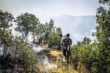 بهره گیری از سرباز آتش نشان ها راهکار صیانت از جنگل های گلستان
