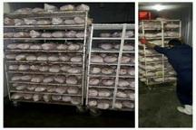 کشف و ضبط یک تن مرغ تاریخ مصرف گذشته در ساوجبلاغ