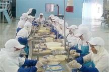 231 نفر در بخش صنایع تبدیلی کشاورزی استان بوشهر مشغول بکار شدند