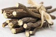 کشف ۱۸۰ کیلوگرم گیاه دارویی در جیرفت