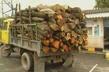 کشف 5  6 تن چوب جنگلی و زغال قاچاق در شهرستان ممسنی