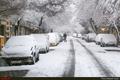 برف مدارس چهارمحال وبختیاری را تعطیل کرد