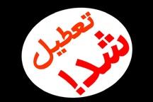 نانواییهای فاقد مجوز در مشهد تعطیل شدند