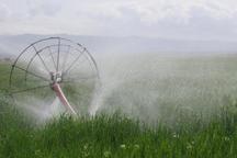 84 درصد طرح های اشتغال بانک کشاورزی تعیین تکلیف شد