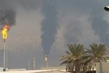 وضعیت زیست محیطی مناطق جنوبی استان بوشهر ارتقا یابد