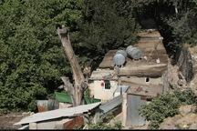 ریزش کوه در دره فرحزاد تهران یک مصدوم داشت