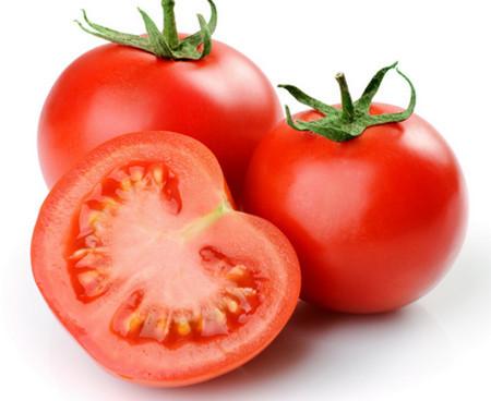 صدور مجوز صادرات گوجه فرنگی