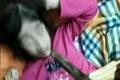پدر سنگدل کرجی ، دختر ۱۷ ساله معلولش را دار زد  دختر زنده است