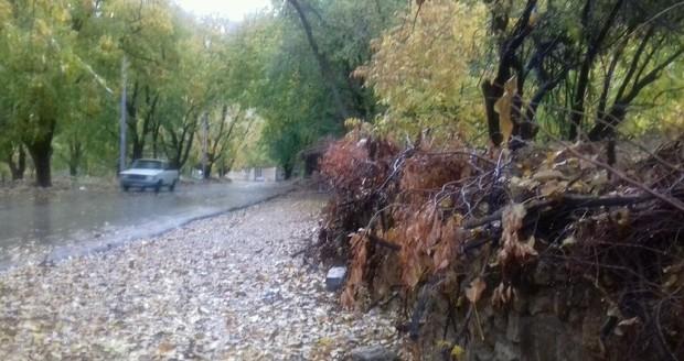 باران نواحی مرزی خراسان شمالی را سیراب کرد
