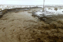 نجات جان ۵۰ نفر در تنگل روستای ارزنه شهرستان خواف