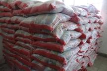 35 تن برنج احتکاری در کاشمر توزیع شد