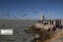 اسکلههای گردشگری مازندران در یک قدمی اجرا