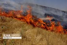 خاموش شدن شعلههای آتش ارتفاعات جنگلهای ممسنی