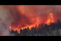 تصاویر/ آتش سوزی گسترده در غرب آمریکا