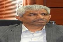 مدیرکل دفتر نظارت بر بهداشت عمومی سازمان دامپزشکی: باور تولیدکنندگان به تحول نیاز دارد