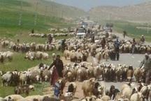 کوچ زودهنگام عشایر به چهارمحال و بختیاری ممنوع است