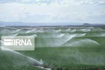 اراضی مجهز به آبیاری نوین در استان کرمان افزایش یافت