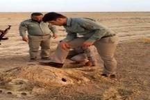 تخریب یک باب کوخه و رهاسازی پرندگان در هفتکل