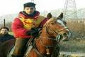 سوارکار کردستانی در گیلان اول شد