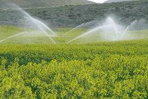 21 طرح کشاورزی در استان بوشهر افتتاح شد