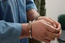 هشت سارق حرفه ای در بافق دستگیر شدند