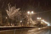 بارش نخستین برف پاییزی در شهر قزوین