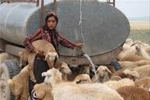 توزیع روزانه 60 هزار لیتر آب آشامیدنی بین عشایر کوچرو در لردگان