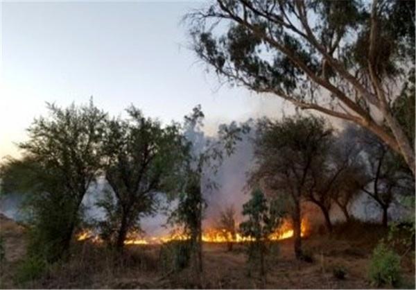 آتش جنگل های یاسوج را فراگرفت  کمک ها هنوز نرسیده اند