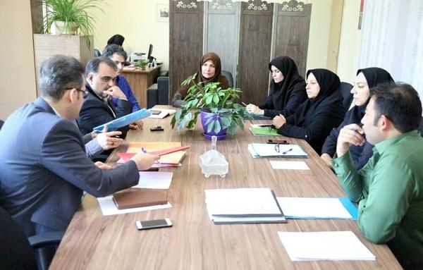 شورای نظارت و رسیدگی بر آموزشگاههای آزاد هنری و موسسات تکمنظوره هنری برگزار شد