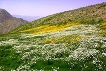 اختلاف 10 ساله مردم 2 روستای مهاباد ختم به خیر شد