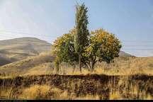 جاذبه های گردشگری پاییزی کردستان - عبدالله رحمانی**