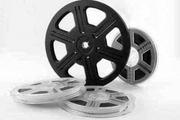 اکران و تحلیل فیلم هندی «پیهو» در یزد
